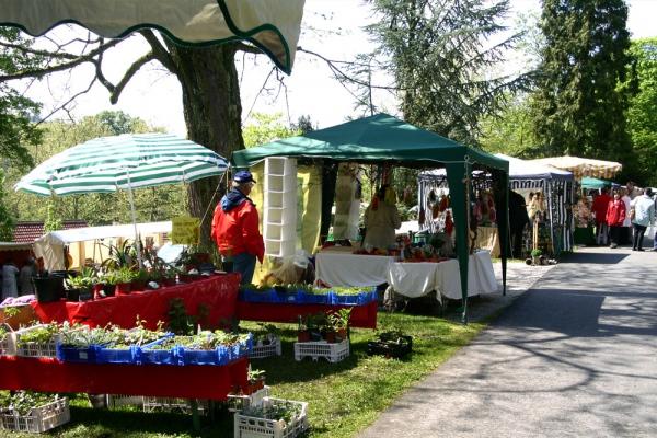 Kräutermarkt im Herrengarten (Foto: Kur GmbH Braunfels)
