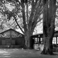 Der Löwenpavillon und die Wandelhalle im jahr 1926. (Foto privat)